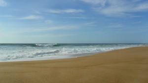 OCEAN MAI